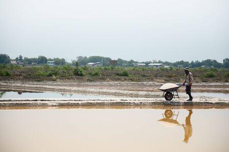 evaporacion: Los tailandeses manteniendo la sal de la agricultura de sal o sal estanque de evaporaci�n para almac�n en Bangkhunthein el 12 de abril de 2015, de Bangkok, Tailandia. Editorial