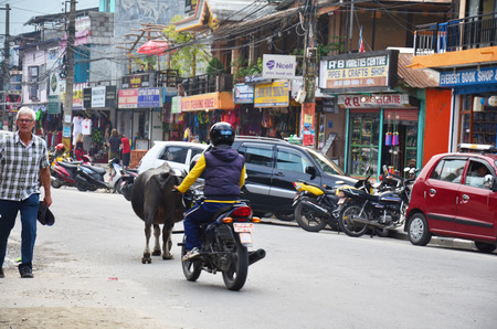 pokhara: People and traffic on road at Pokhara street market on October 30, 2013 in Pokhara Nepal