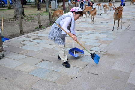 defecate: Old japanese woman sweeper cleaning deer pellets at walkway of Todai-ji Temple on July 9, 2015 in Nara, Japan Editorial