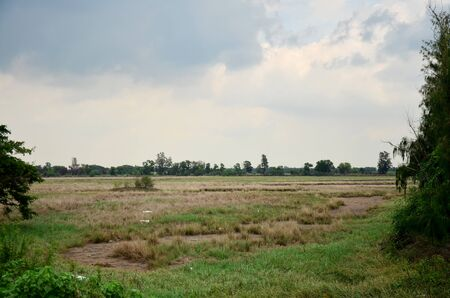 water sources: Dry grasslands occur from disposal of Industrial waste and old oil to natural water sources of illicit. Stock Photo