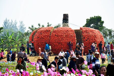 jim: People travel and and take photo with big pumpkin at Jim Thompson Farm on December 30, 2013 in Nakhon Ratchasima, Thailand