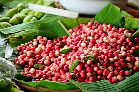 and acclaim: Carunda or Karonda or Carissa carandas or Mango Lemon acclaim fruits sale at market in Thailnad.