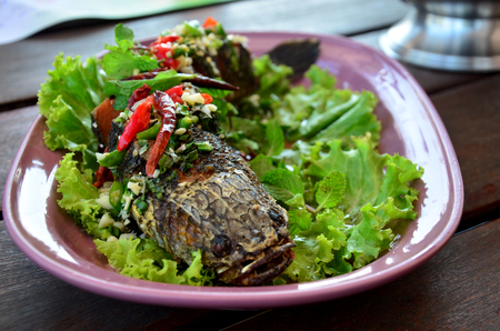 snakehead: Snake-head fish Deep Fried serve with Herb and Spicy Sauce at restaurant in Thailand Stock Photo