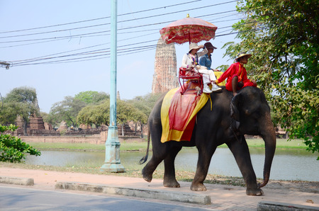 ancient elephant: Traveler riding elephant for tour around Ayutthaya ancient city on March 15, 2015 in Ayutthaya, Thailand