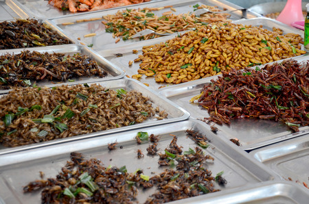 Exotic food fried Insect in market
