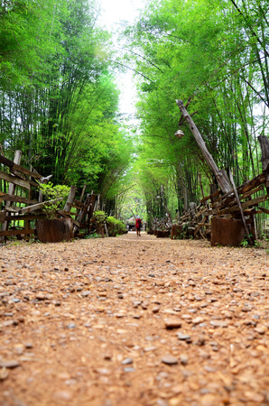 Walkway crushed stone with bamboo cave at the National Ethnic Cultural Park in Tad Pha Suam waterfall at Pakse in Champasak, Laos.