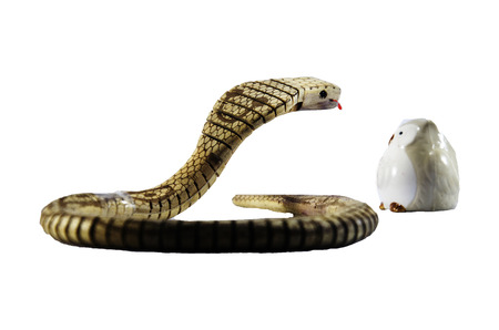 King cobra snake toy made from wood with ceramic owl bird doll