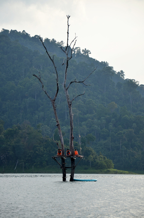 Thai people relaxing and playing at Tree death stand in Cheow Lan Lake at Ratchaprapa Dam Reservoir in Khao Sok National Park in Surat Thani, Thailand