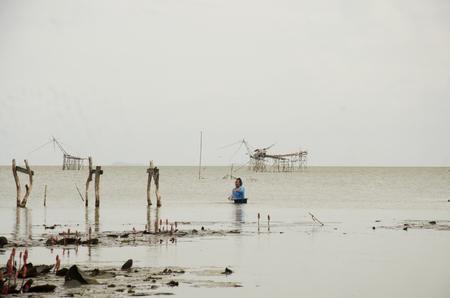 Vissers vangen van vis en het uitzicht van de visserij lift en dip netto-machine in kanaal bij Ban Pak Pra dorp in de schemering tijd op 27 september 2016 in Phatthalung, Thailand.