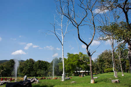 Landscape mountain forest at San Kamphaeng Hot Springs onsen in Mae On District for thai people and foreign travelers travel visit rest relax outdoor garden at Chiangmai city in Chiang Mai, Thailand