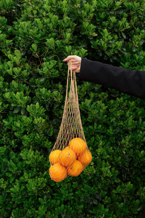 Anonymous young woman's hand holding organic oranges