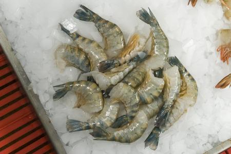 crustaceans: Raw prawns on ice