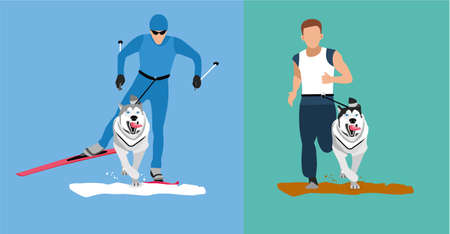 victorious: Winter cross country skiing with a dog and a summer running competition with the dog-husky. Flat cartoon illustration. Sport banner. Dog sticking his tongue runs ahead of the man. Skijoring, canicross Illustration