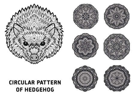 rotational: Line art. Element for your design. The head of a hedgehog and patterns of rotational circular drawn from the head of the hedgehog. Monochrome patterns with ink. Coloring page for adults.