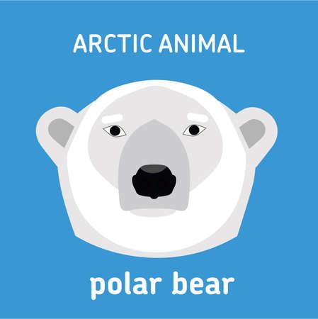 antarctica: Animals of the Arctic. The head of a polar bear. Vector Set of polar mammals. Flat style illustration
