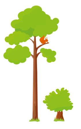 Pine and shrub isolated on white background. Vector flat cartoon design illustration
