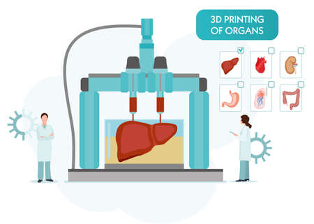 Bioprinting concept, 3D printing of the liver, stomach, lungs, kidneys and heart. scientists with 3D printer. Colorful vector illustration in flat style. Standard-Bild - 125709715