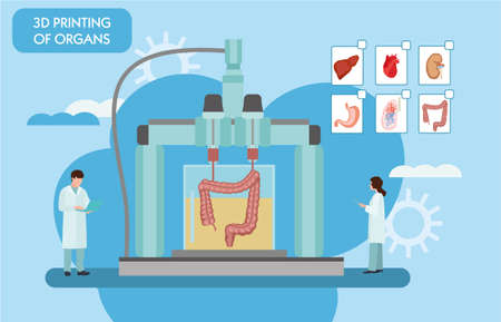 3d printing in modern medical technology. Bioprinting, prosthetics. 3D printing of the liver, stomach, lungs, kidneys and heart. Colorful vector illustration in flat style. Vettoriali