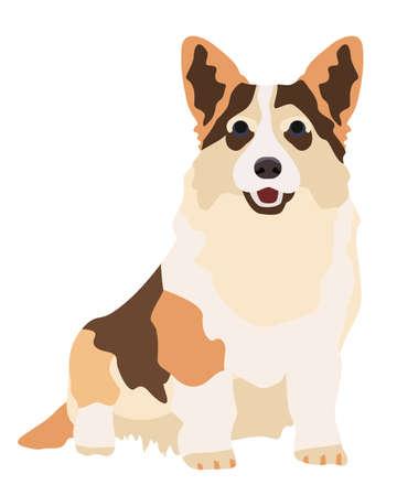 Dog welsh korgi. Flat cartoon style vector illustration isolated on white background.