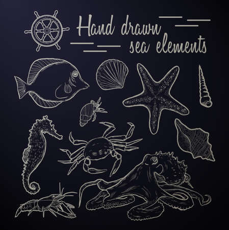etch: Collection of marine inhabitants. Vector set. Sea shell Hand drawn seashell marine engraving illustration on  black background. Sea shell etch sketch drawing. Illustration