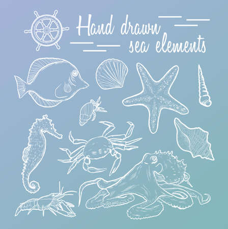 etch: Collection of marine inhabitants. Vector set. Sea shell Hand drawn seashell marine engraving illustration on blue background. Sea shell etch sketch drawing.