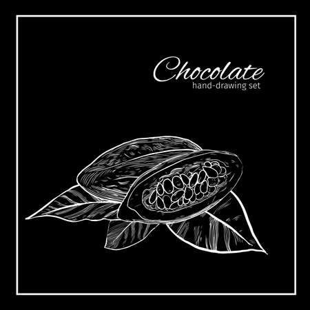 growth hot: Background with Cocoa bean and leaf.