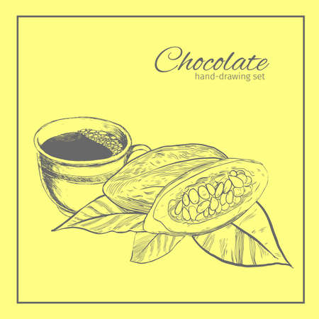 cocoa bean: Background with Cocoa bean and leaf. Hand drawn sketch etch illustration. Illustration