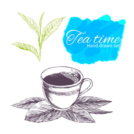 Sketch tea set.Hand drawn vintage illustrations