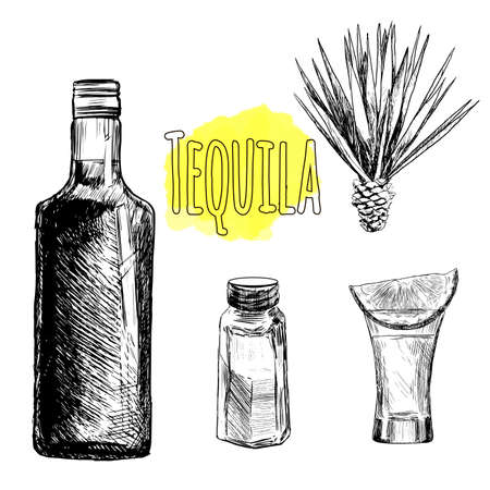 alcoholic: Glass and botlle of tequila. Cactus, salt and lime Hand drawn sketch set of alcoholic cocktails. Vector illustration