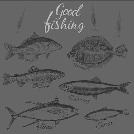 Buona fishing.Hand disegnato pesce schizzo. .Flat Design moderno illustrazione vettoriale.