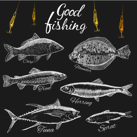 Good fishing.Hand drawn sketch fish. .Flat design modern vector illustration.