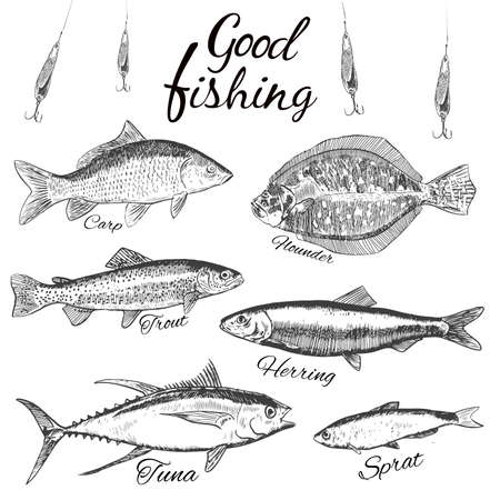 flounder: Good fishing.Hand drawn sketch fish. .Flat design modern vector illustration.