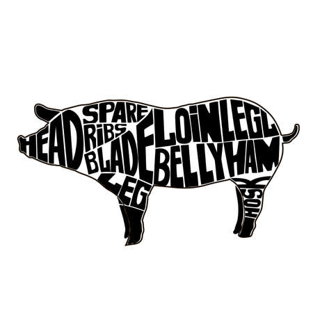 Typographic pig butcher cuts diagram.icon, vector illustration