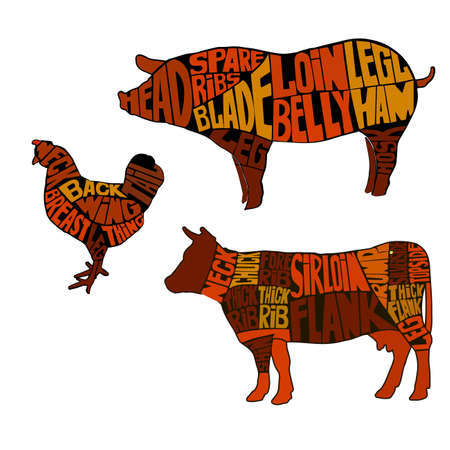 Diagrams for butcher shop.. The silhouette of the animal, beef, pork and poultry. Vector illustration. Illustration