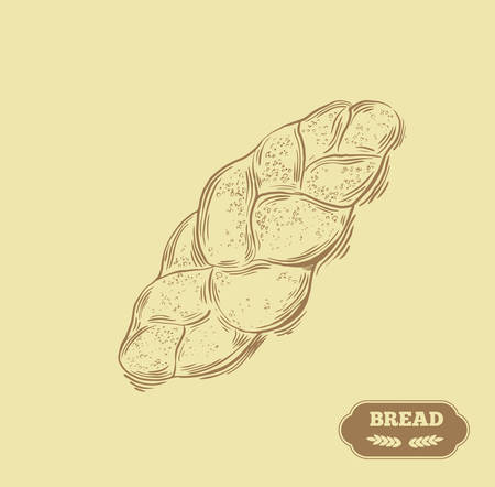 bun: Bakery. Bread vector hand drawn illustration. Illustration