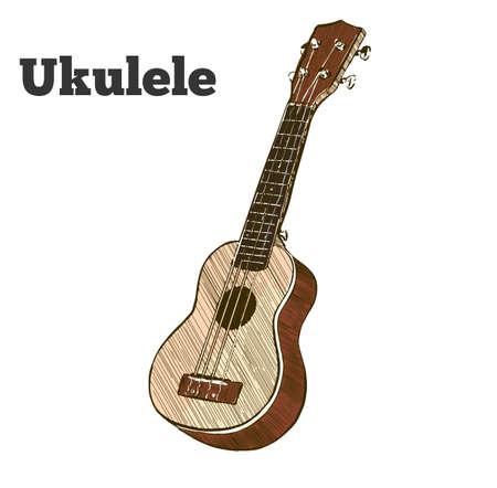 fret: Vector hand drawn illustration of ukulele. Engraving retro vintage style. Illustration