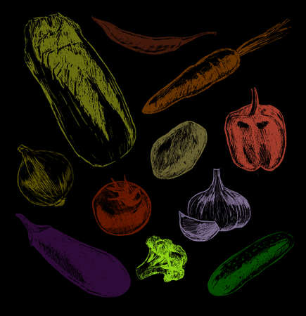 Big Set of vegetables hand drawn illustrations,