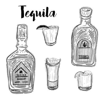 Tequila bottle, shot glass and ingredients, vector sketch. Mexican alcohol drinks menu design elements. Agave plant and root illustration. Banco de Imagens - 126388934
