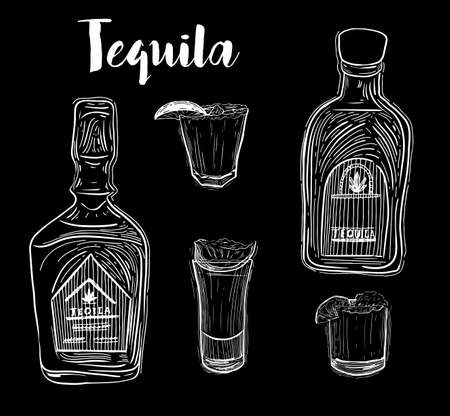 Tequila bottle, shot glass and ingredients, vector sketch. Mexican alcohol drinks menu design elements. Agave plant and root illustration. Banco de Imagens - 126388940