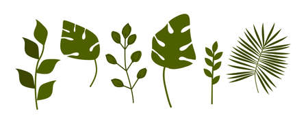 Collection of leaves. Set of vector design elements.