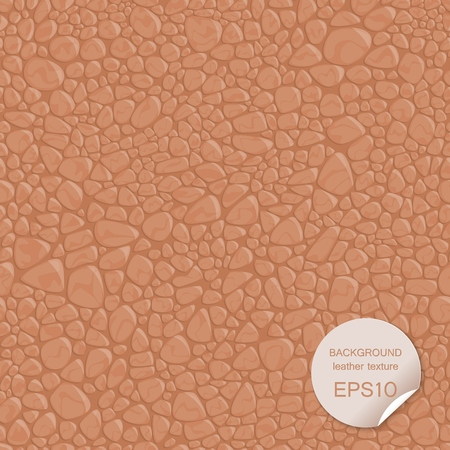 Seamless background leather texture. Vector illustration EPS10. 向量圖像