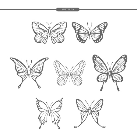 Set black butterflies isolate on white background. Hand drawing. Vector illustration.
