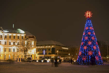 christmas night: night view of the christmas tree on a Cathedral square in Vilnius, Lithuania