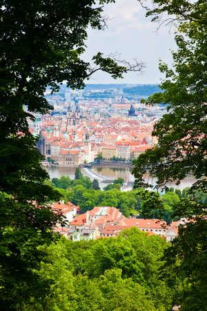 beautiful Prague seen through trees on a Petrin Hill  photo
