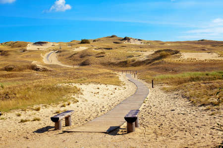 nature reserve with dried grass and sand dunes in Curonian Spit, Lithuania Stock Photo