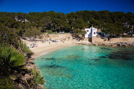 gat: beautiful beach Cala Gat, Majorca, Spain