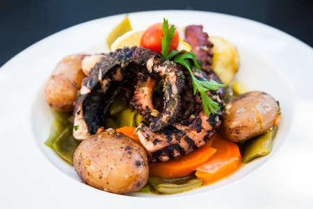 tentacle: close-up grilled octopus tentacle served with stewed vegetables