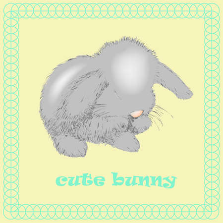 Vector Bunny washes on a white background
