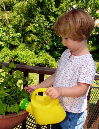 Little girl watering plants
