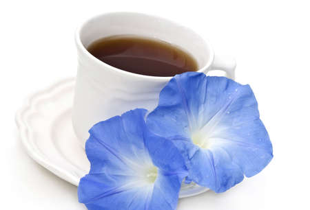 Tea or coffee cup with two blue morning glory flowers on white